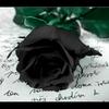 mark-blackroses
