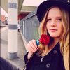 poppyflower