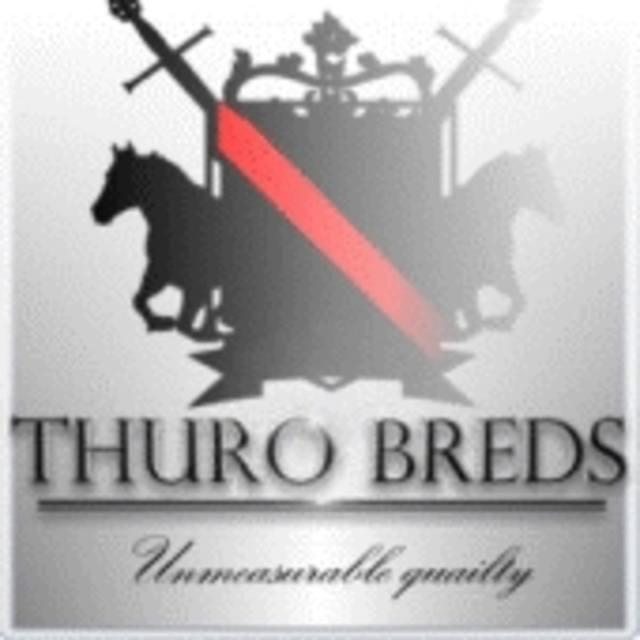 thruobreds