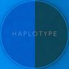 Haplotype