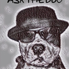 Ask the Dog