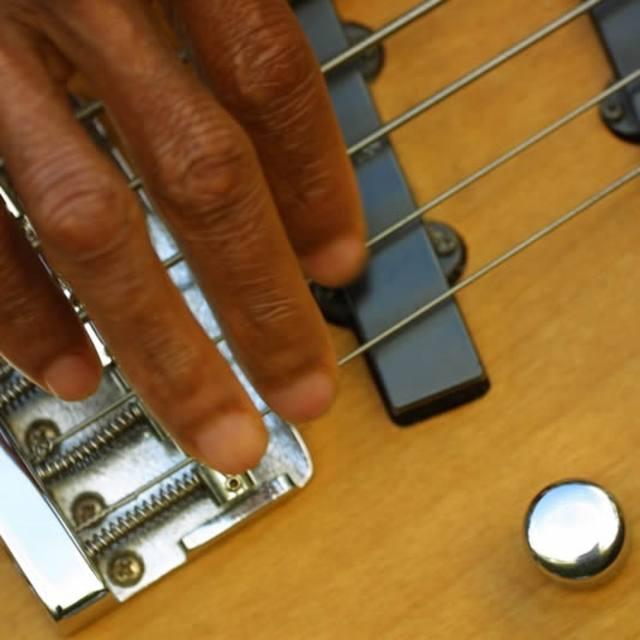 Guitarist/harmonica