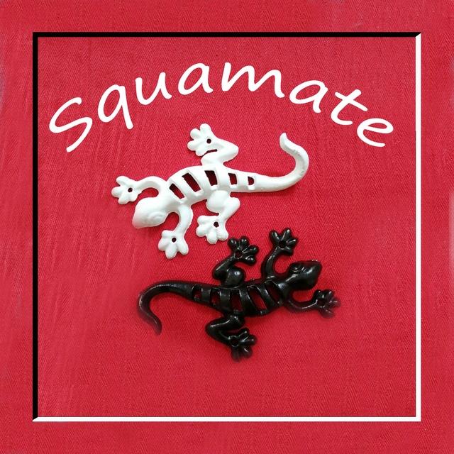 Squamate