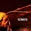 Redmoth