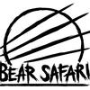 BearSafari