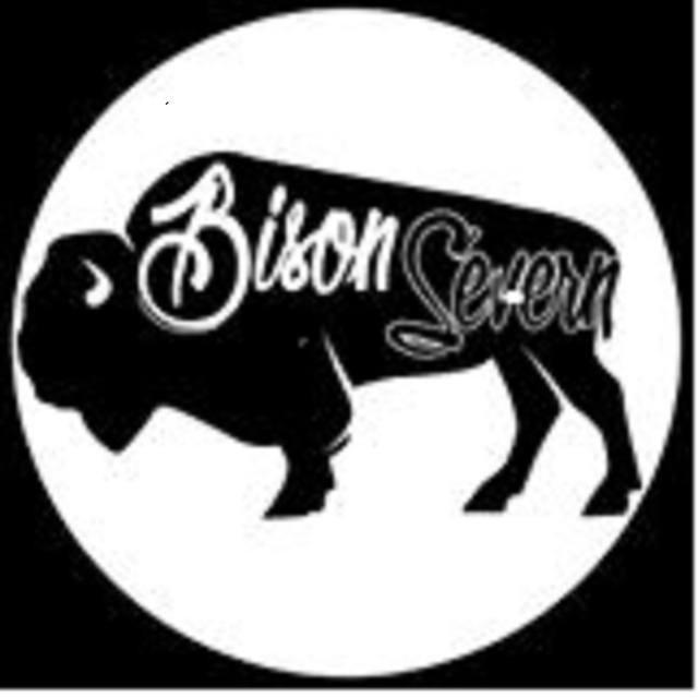 Bison Severn