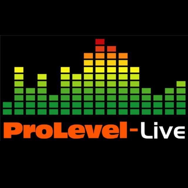 ProLevel Live Sound Services