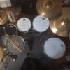 shelbz drummer