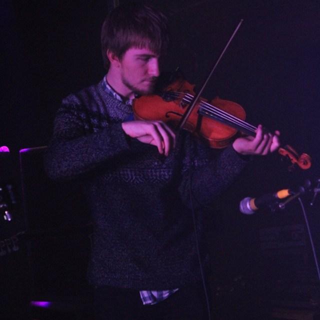 Fiddlefe