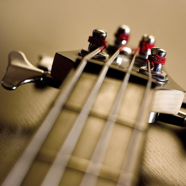 Bassman53