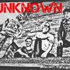 theunknownpunkbandd