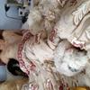 jean337809