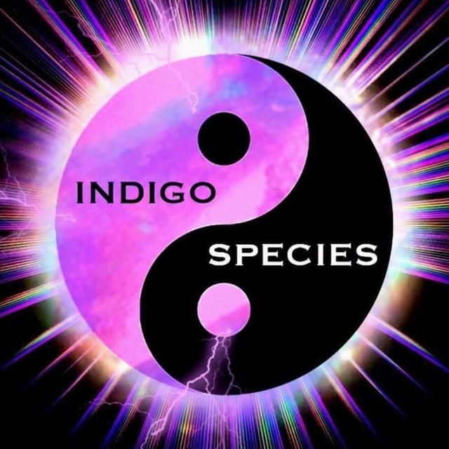 Indigo Species