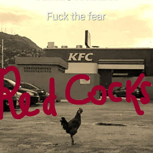 Red Cocks