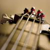 stringsman84