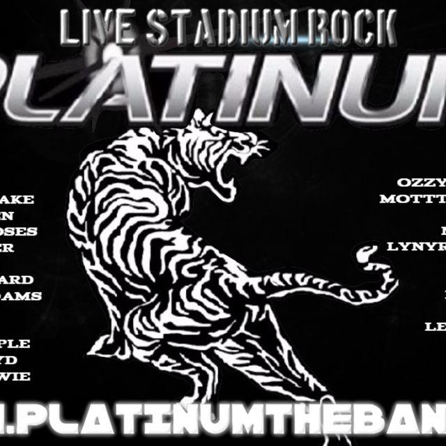 PlatinumRockband