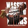 wasswa1