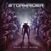Stormriderofficial