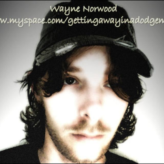 WayneN