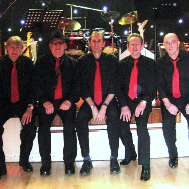 THE REVIVALS BAND