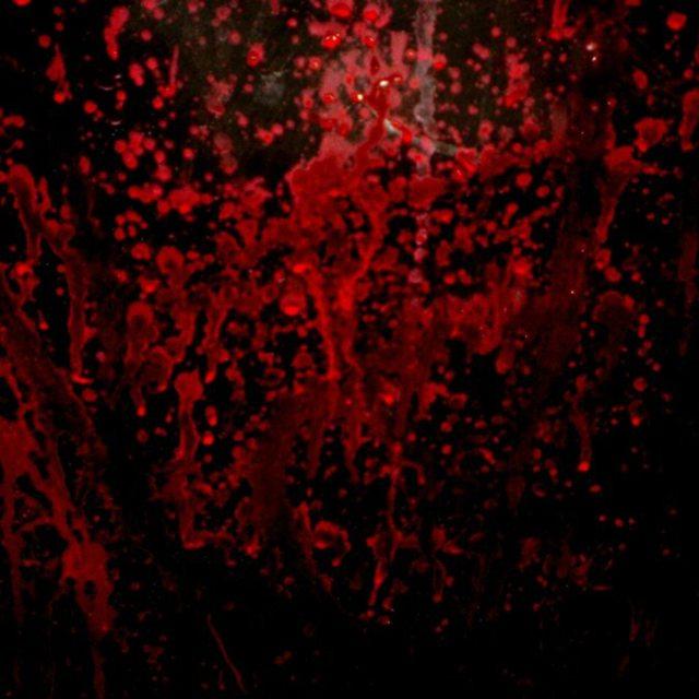 Bloodyard