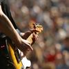 guitarnbass