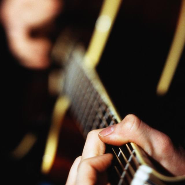Guitarist Vocalist