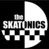 THE SKATONICS