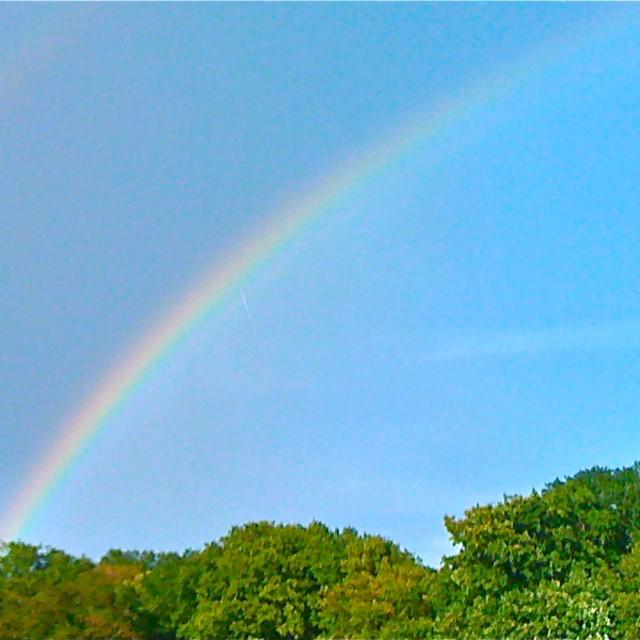 RainbowMarina