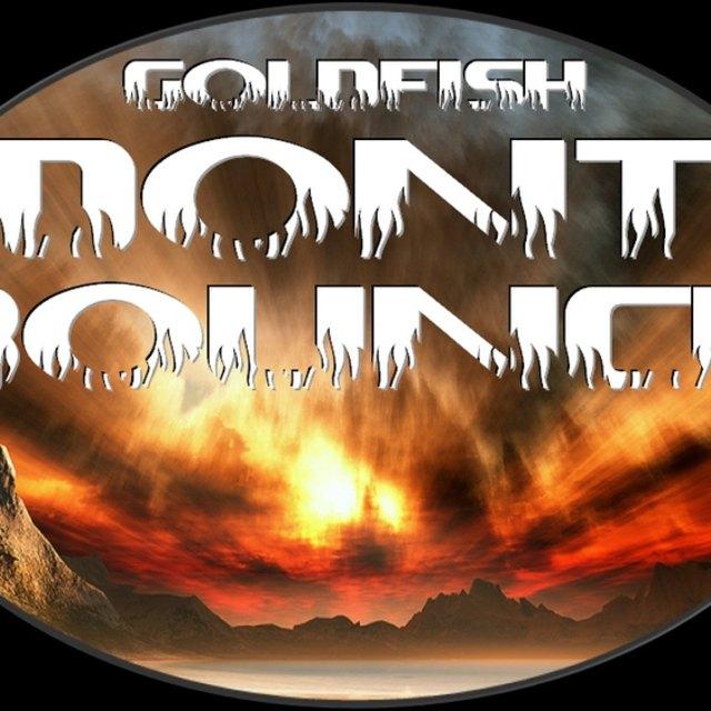 Goldfish Don't Bounce