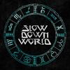 SlowDownWorld
