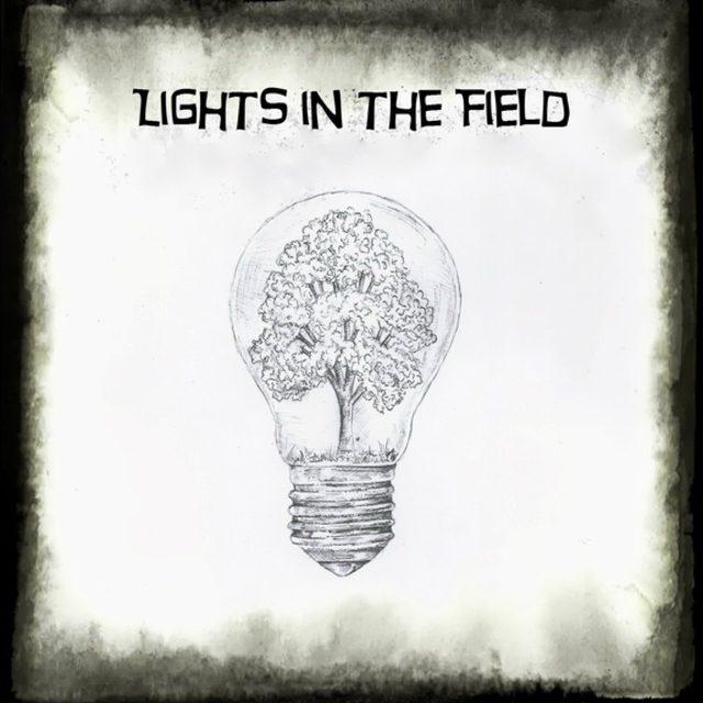 Lights in the Field