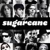 sugarcane2020
