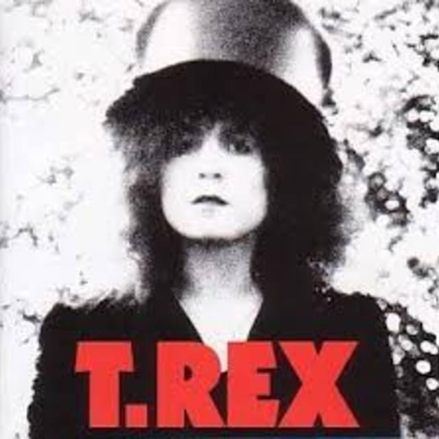 TRex99264